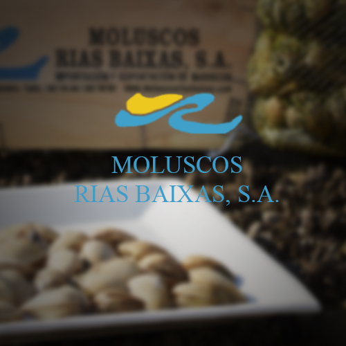 moluscos3